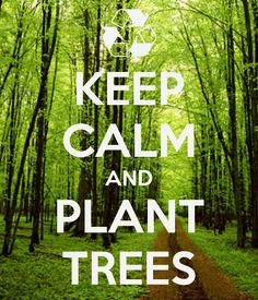 Keep Calm And Plant Trees!  If you need some landscaping done around your house or workplace, call Lawn Tigers Landscaping in Walled Lake, MI at (248) 669-1980 to schedule an appointment TODAY or visit our website www.lawntigers.net for more information!