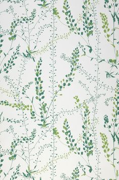 fabric or wallpaper this would be a gorgeous pattern to wrap a room, botanical, green, white Green Floral Wallpaper, White Wallpaper For Iphone, Accent Wallpaper, Apple Watch Wallpaper, Botanical Wallpaper, Iphone Background Wallpaper, Cool Wallpaper, Pattern Wallpaper, Scandinavian Wallpaper