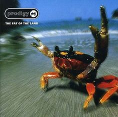 The Prodigy. My favorite album of theirs.
