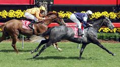 Efficient (foaled 2003) is a grey Thoroughbred racehorse gelding, bred in New Zealand, who won the 2007 Melbourne Cup and the 2006 Victoria Derby, both times ridden by Michael Rodd.