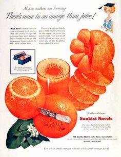 Sunkist Navel Oranges (1955)