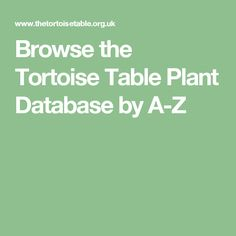Browse the Tortoise Table Plant Database by A-Z