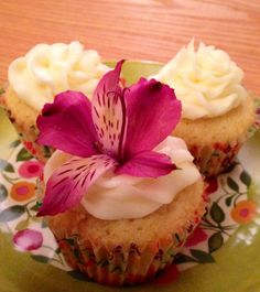 Vanilla cupcake with a vanilla pudding filling and topped with a light buttercream