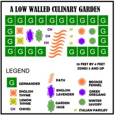 Low Walled Culinary Herb Garden