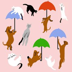 ideas for cats love illustration paintings Cat And Dog Drawing, Kitten Drawing, Cute Wallpaper Backgrounds, Cute Wallpapers, Creepy Cat, Dog Illustration, Illustrations, Super Cat, Raining Cats And Dogs