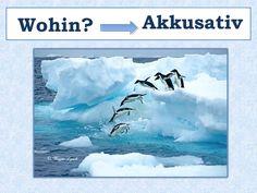 Niveau A1, A2, B1 Wechselpräpositionen_Wohin_Akkusativ_ Theorie und Beispielsätze