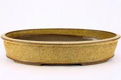 29,5 x 20 cm Bonsaischale Bonsai Bonsaï Pot Shohin Roman Husmann 5721
