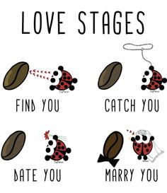 Love stages http://www.thesofishop.com/