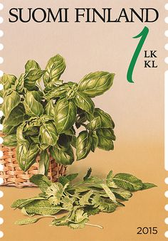 Puutarhan antimia -postimerkit 2015 / Gifts from Garden stamps 2015 Old Stamps, Flower Stamp, Ancient History, Mailbox, Postage Stamps, Finland, Drink, Vegetables, World