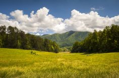 View of a field overlooking the Great Smoky Mountains National Park in the spring