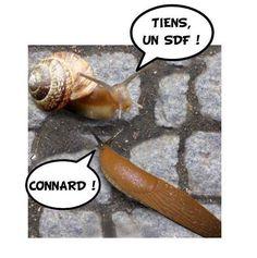 Allez, bonne journée ! http://www.15heures.com/photos/9nxd #LOL