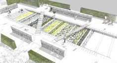 landarchs.com - Discover the Ancient Secrets of the Physic Garden - Landscape Architects Network