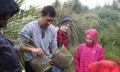 NZ BIOLOGICAL GERITAGE NATIONAL SCIENCE CHALLENGE Sept 2020 Myrtle, New Zealand, Rust, Challenges, Science
