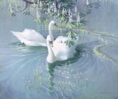 Harmony of Spring' – Two Swans Light Blue Aesthetic, Angel Aesthetic, Nature Aesthetic, Aesthetic Photo, Aesthetic Pictures, Aesthetic Bedroom, Aesthetic Clothes, Vasco Wallpaper, Mode Poster