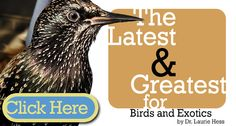 This Year's Hottest #Bird and #Exotic Products | by Dr. Laurie Hess