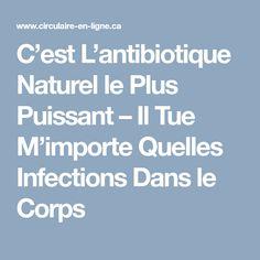C'est L'antibiotique Naturel le Plus Puissant – Il Tue M'importe Quelles Infections Dans le Corps