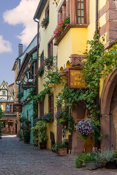 Riquewihr, Alsace, France. Competition is stiff but Riquewihr is, just maybe, the most enchanting town on the Route des Vins.  Read more: http://www.lonelyplanet.com/france/riquewihr#ixzz3ANKVHZKR
