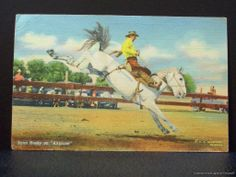 Old Western Postcard Cowboy Rodeo Lynn Husky on Airplane.  Now that's an airplane ride.