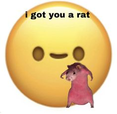 Cute Memes, Really Funny Memes, Funny Relatable Memes, Haha Funny, Funny Profile Pictures, Funny Reaction Pictures, I Got U, Def Not, Funny Animal Jokes