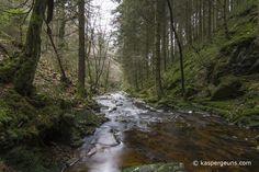Luswandeling van ongeveer een kleine acht kilometer door de vallei van de Trô Maret, Ardennen