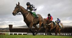 Tips & Analysis Place Holder 1 Racing News, Hurdles, Horse Racing, Sports News, Camel, Place Holder, World, Animals, Image