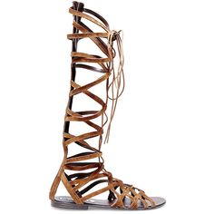 Steve Madden Women's Hercules Sandals ($20) ❤ liked on Polyvore featuring shoes, sandals, zip back sandals, lace up flats, flat lace-up shoes, gladiator sandal and steve madden flats