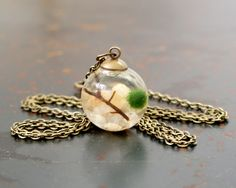 Live Marimo Moss Ball Terrarium Necklace by MossTwig on Etsy https://www.etsy.com/listing/185237229/live-marimo-moss-ball-terrarium-necklace