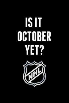 Hockey! Hockey! Hockey!