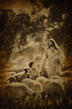 Jesus with child and sheep