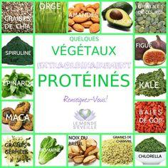 Les graines de chia, l'orge, les amandes, l'avocat, les graines de courge, la figue, le chou kale, les baires de goji, la chlorella, les graines de chanvre, les noix du brésil, la salade romaine, les graines germées, la maca, les épinards, la spiruline.