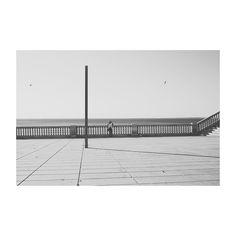 Moni oteando los océanos  #paradorcadiz #hotelatlantico #cádiz #cai #andalucía #spain #blackandwhite #blancoynegro #minimalism #mylove #lines #shadow #ocean #sea #mar #atlantic #igers #igerscadiz #igerspain #vsco #vscoedit #vscolovers #canon6d #35mm #summer #verano