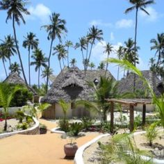 Zanzibar, east coast, Green and Blue resort