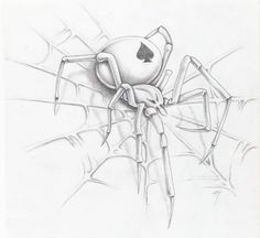 spider on a web by markfellows.deviantart.com on @deviantART