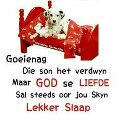 Goeie Nag, Good Night Sweet Dreams, Good Night Quotes, Special Quotes, Morning Pictures, Sleep Tight, Afrikaans, Quote Of The Day, Sleep Well