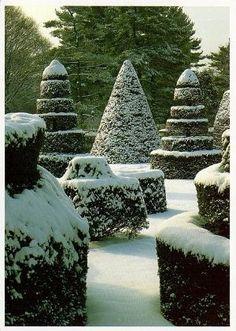garden's winter coat.