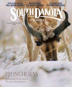 Kolache Making College Guide, Fall River, Kolaczki Recipe, South Dakota, Short Stories, Evolution, Magazine, Dessert, Recipes