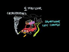 ▶ Types of stressors - YouTube