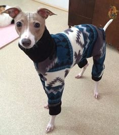 Italian Greyhound Clothes  'Aztec Moose 4-Legged by Duds4BudsToo
