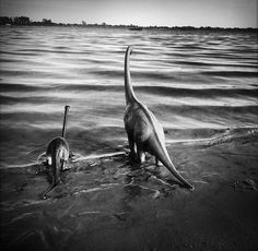 travel-photography-optical-illusions-dinosaur-toys-dinodinaseries-jorge-saenz-12