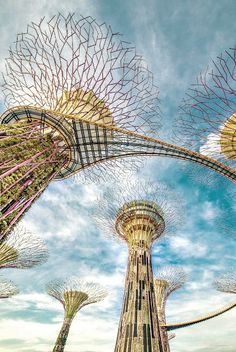 Supertrees are tree-like structures that dominate the Garden of the Bays' landscape in Singapore.