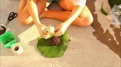 DIY hanging kokedama (Japanese Moss Balls) plant tutorial
