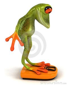 Bokserska żaba