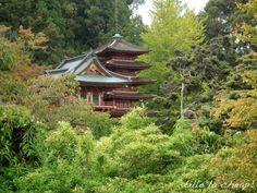 Japanese Gardens, San Francisco http://beatricebp.com