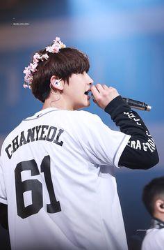The Prince flower crown Park Chanyeol Exo, Kpop Exo, Exo Chanyeol, Kyungsoo, Exo Korean, Korean Star, K Pop, Chen, Kai