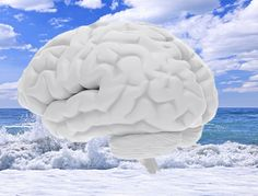 double brain - Cerca con Google