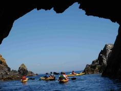 Atlantic Sea Kayaking - West Cork Ireland - Half Day West Cork Kayaking Safari- good tripadvisor reviews