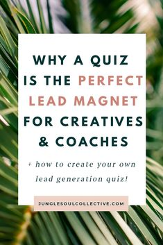How to Grow Your Email List with A Quiz Lead Magnet (That Converts) – Jungle Soul Collective Email Marketing Strategy, Online Marketing, Digital Marketing, Direct Marketing, Business Tips, Online Business, Opt In, Online Quizzes, Lead Magnet