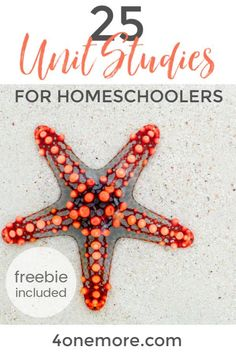 Unit studies are an efficient and interesting way to homeschool multiple ages together without losing your mind as the homeschool mom. Here's a list of Social Studies Notebook, Teaching Social Studies, Secular Homeschool Curriculum, Homeschooling Resources, Learning Activities, Teaching Us History, History Education, Homeschool Kindergarten, Unit Studies