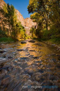 Fall colors line Aravaipa Creek in the Aravaipa Canyon Wilderness near Mammoth, Arizona. Color Lines, Rivers, New Work, Wilderness, Landscape Photography, Arizona, To Go, Usa, Colors