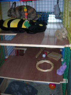 Homemade Rabbit Toys - Rabbits Online